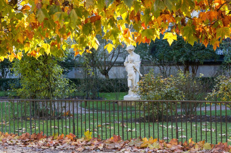 Weekend à Paris – Le Jardin des Plantes