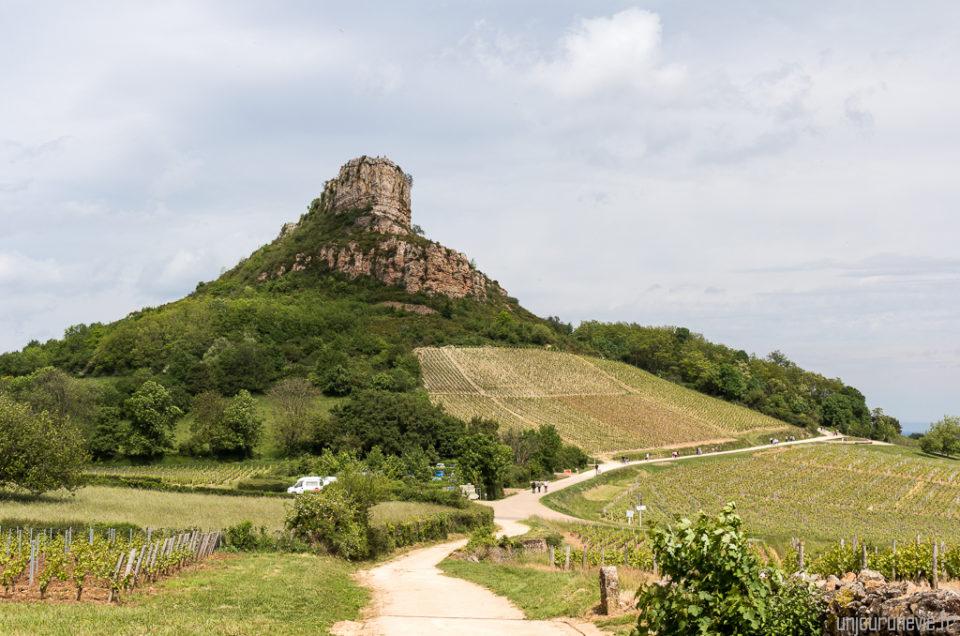 La Roche de Solutré, entre vignes nobles et préhistoire
