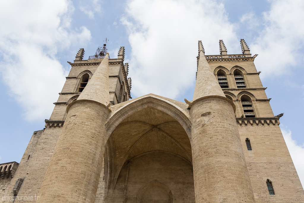 Cathédrale Saint-Pierre - Montpellier